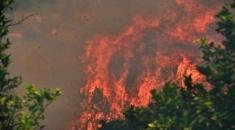 Αίτημα κήρυξης της περιοχής στη Μόλα Καλύβα σε κατάσταση έκτακτης ανάγκης